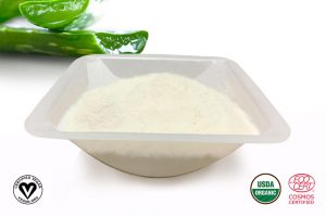 Aloe Vera Gel Spray Dried Powder – SC Organic